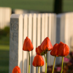 11 Fd Veterans' Week Memorial Event / 11 RAC Événement commémoratif de la semaine des vétérans